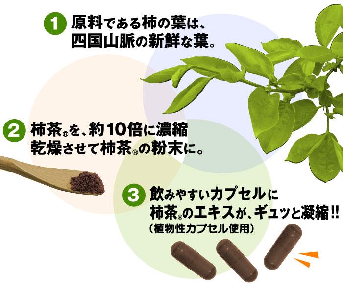 原料である柿の葉は、四国山脈の新鮮な葉。 柿茶を約10倍に濃縮乾燥させて柿茶の粉末に。 飲みやすいカプセルに柿茶のエキスが、ギュッと濃縮!!