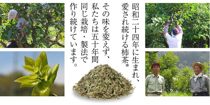 昭和二十四年に生まれ、愛され続ける柿茶R。同じ栽培・製法で作り続けています。