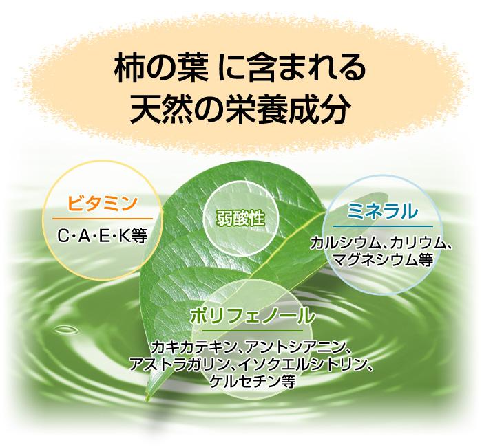 『柿茶』は栄養バランスに優れた天然のサプリメント!!